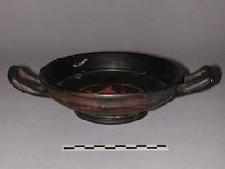An image of Stemless cup