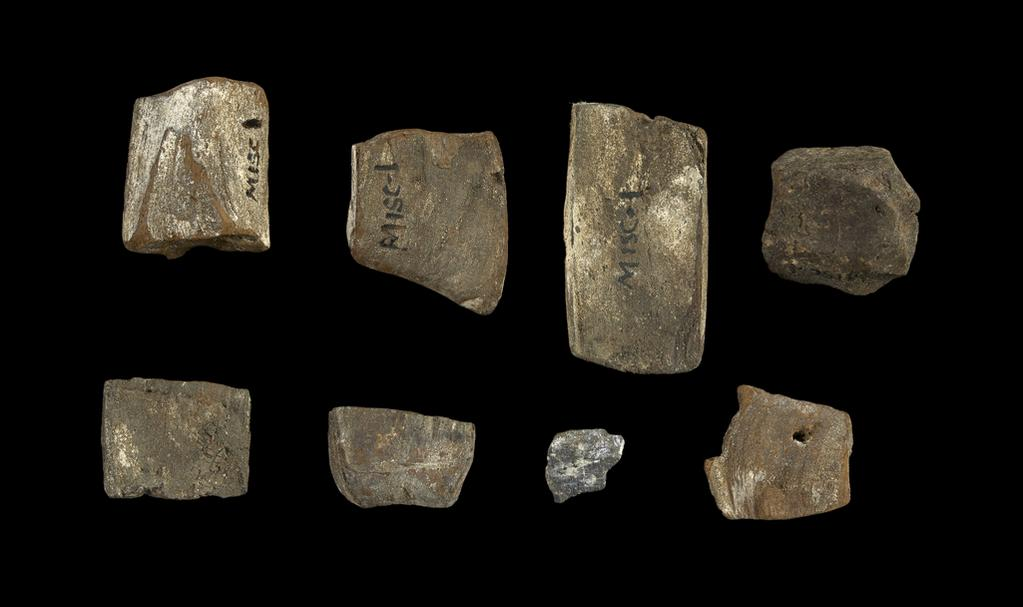 An image of Stone and mineral fragments, in box. Egyptian.