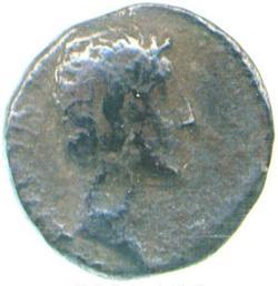 An image of Quinarius
