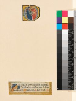 An image of Cutting (manuscript)
