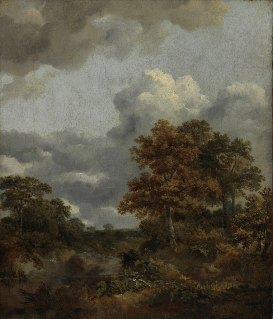An image of Landscape with a pool. Gainsborough, Thomas (British, 1727-1788). Oil on canvas, height 34.9 cm, width 29.8 cm, circa 1746-1747.