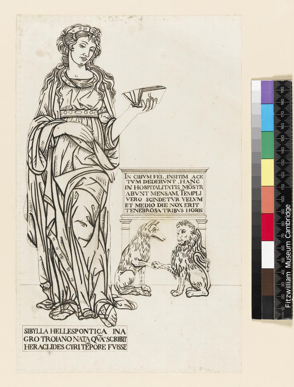 An image of Title/s: Drawing reduced from tracings taken from the inlaid marble pavement of Siena Cathedral during its restoration in the nineteenth centuryTitle/s: The Hellespontine Sibyl Maker/s: Maccari, Leopoldo (draughtsman) [ULAN info: Italian artist, 1850-1894?]Technique Description: pen and black ink on lightly squared paper Dimensions: height: 280 mm, width: 186 mm